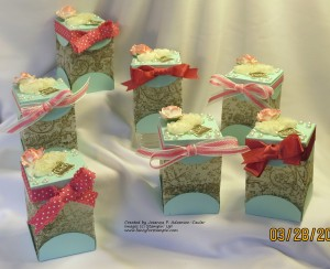 Vellum Treat Boxes