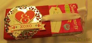 Sweetheart Candy Sleeve-5